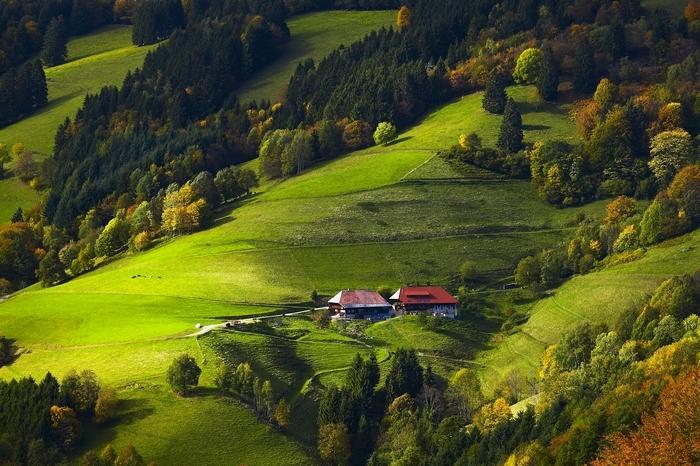 Блог компании Велопробег: Сказки Шварцвальда, или продолжение фестиваля скидок