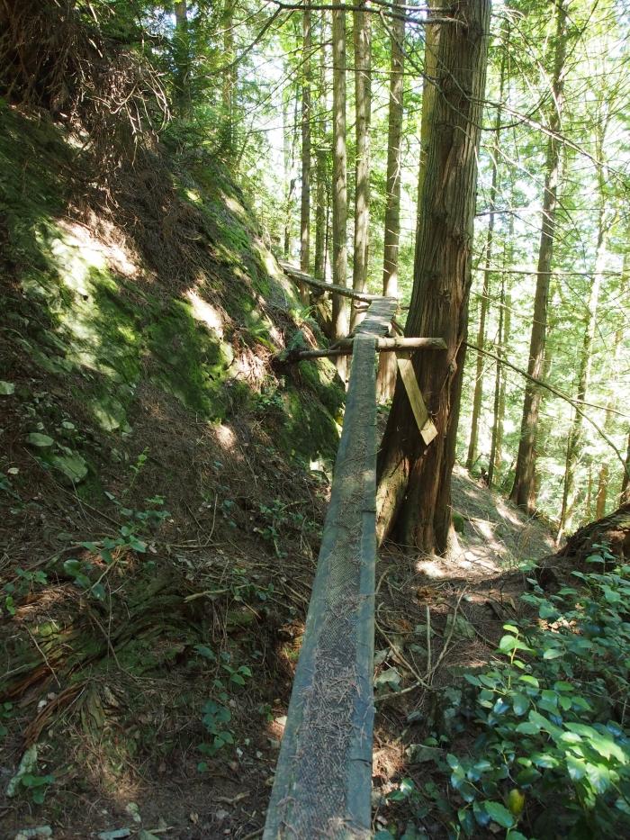steep and gnarly ))): Fantasyland, pt.2. Silverstar-Bowen