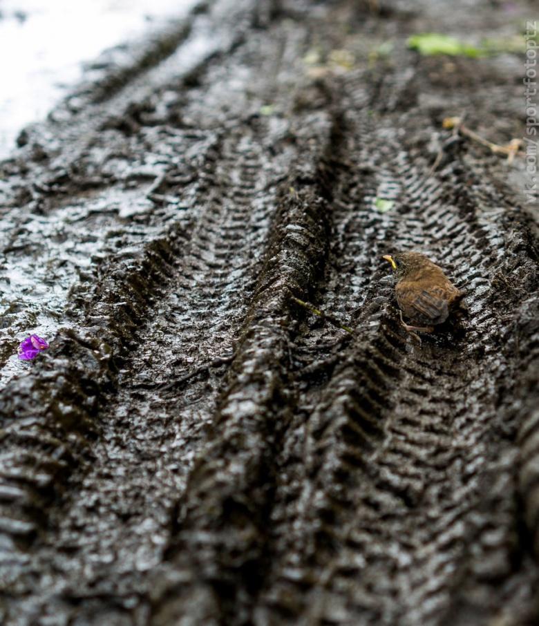 DISCO: Мощный дух карельского эндуро
