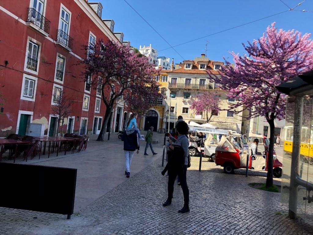 DISCO: Португальская жара