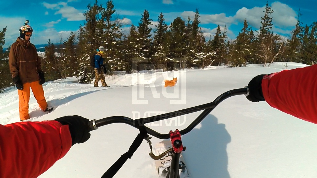 snowscoot: Новости сноускут тусовки