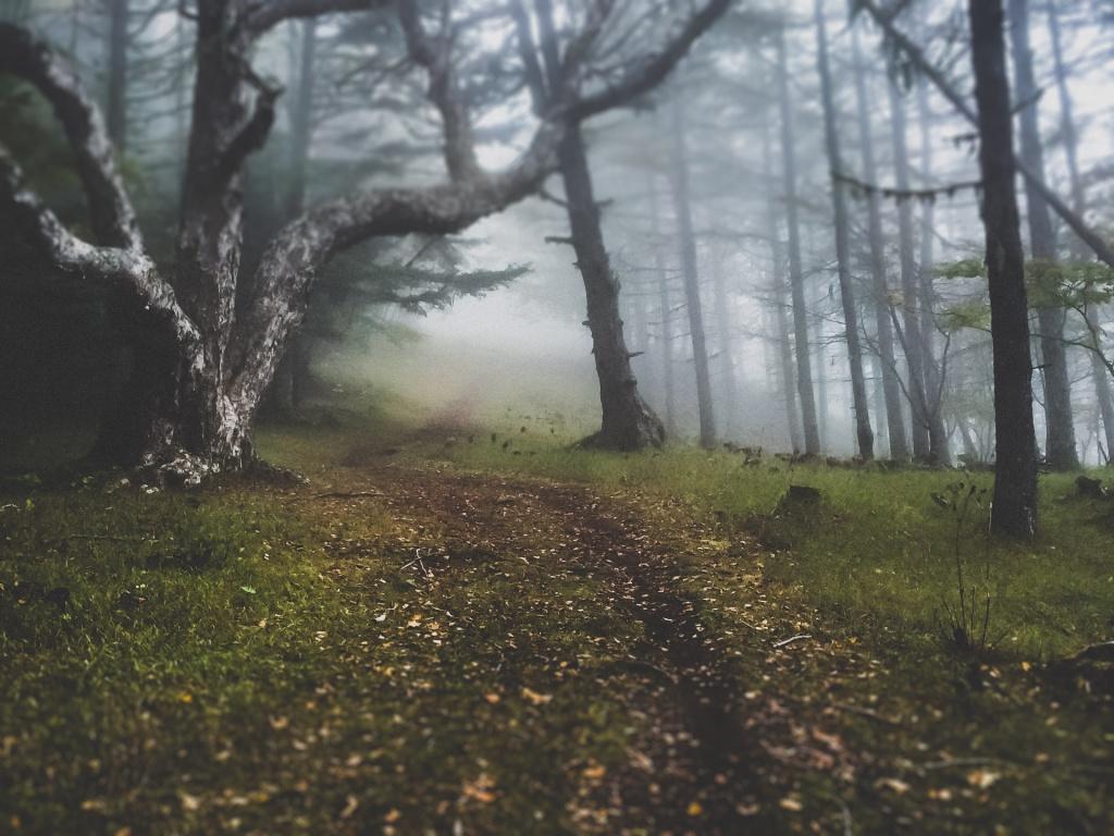 Личный блог: The Absent Hunter: перевод статьи Eskapee.com об этом крутом дядьке