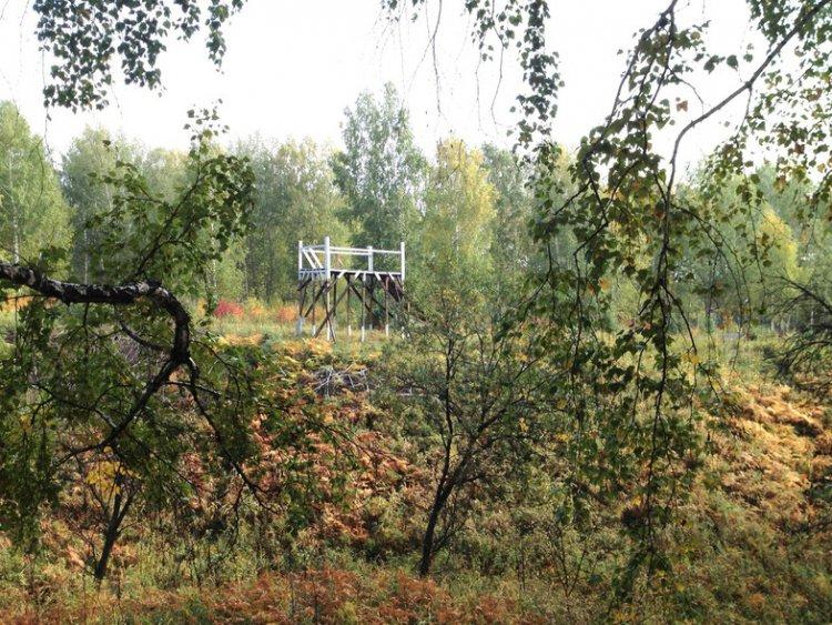 Личный блог: Новосибирск, випы и почти горы