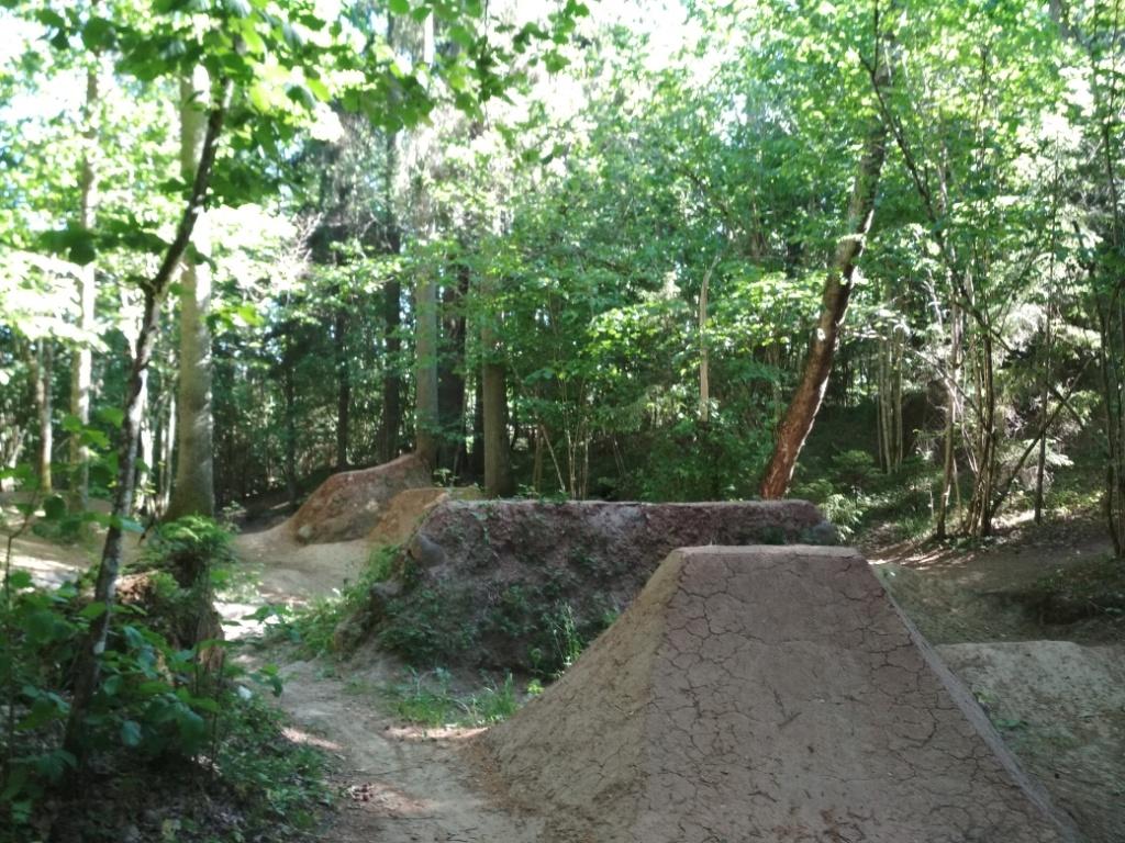 Блог им. Dustman: Даунхил и слоупстайл в дремучем латвийском лесу.