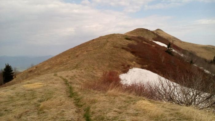 """FREERIDA.RU: """"Семиглавая online"""". Отчет о подготовке трейла с горы Семиглавая."""