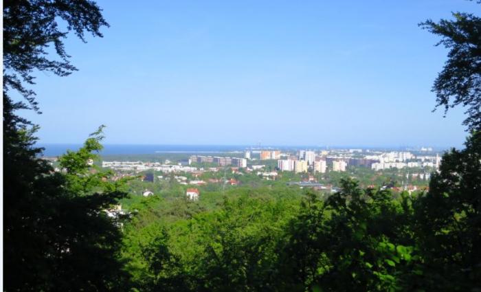 Блог Антона Алещенкова: Наши тренировки в Калининграде