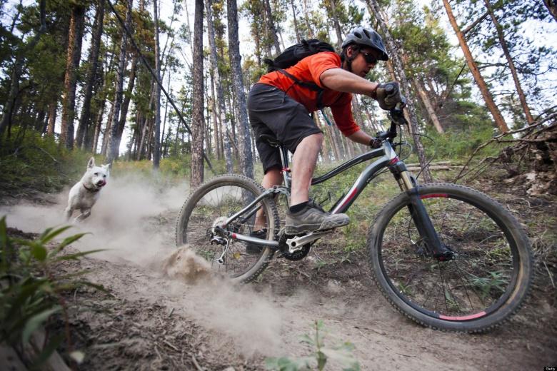 О горном велосипеде: А можно ли обойтись без заднего тормоза?