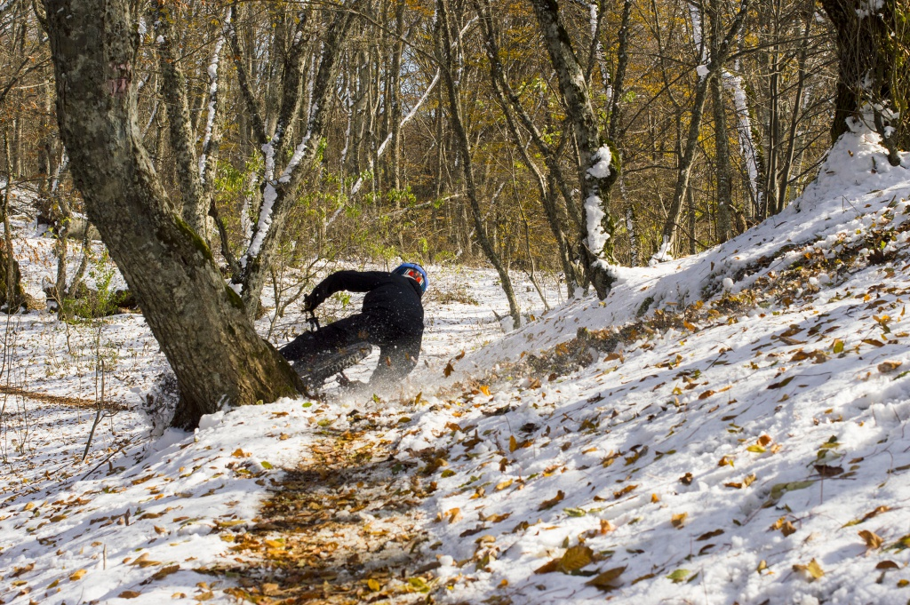 Блог им. JustUnicorn: Алуштинские котики и Крым в октябре-ноябре