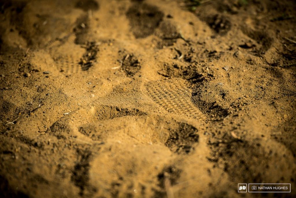 World events: UCI DH World Cup: пыль и камни Мон-Сент-Энн