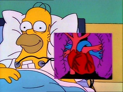 Блог компании AlienBike.ru: Следить за сердцем можно не только в больнице!