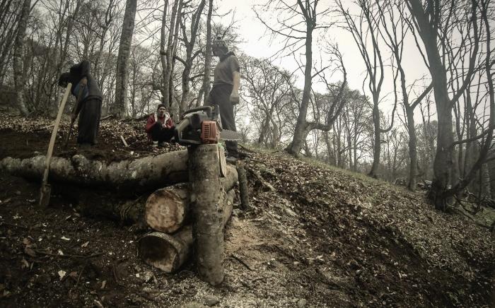 Блог им. Auster: WAYRA DH: возвращение даунхилла на Кавказ!