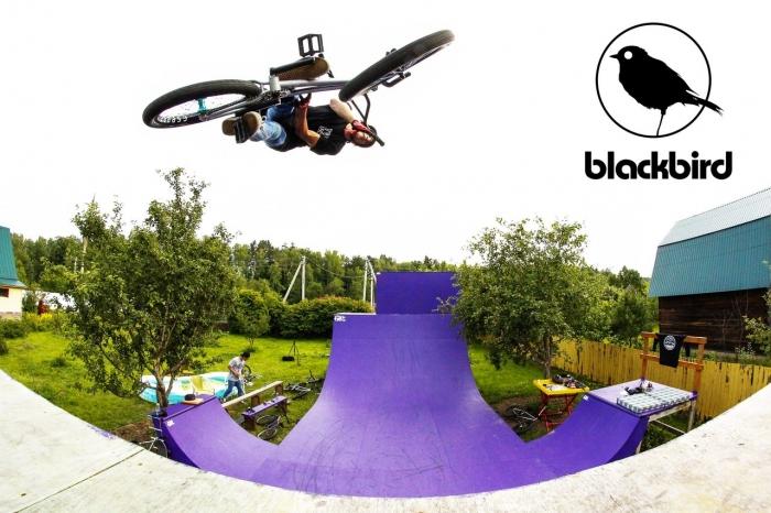 Блог им. blackbird: Welcome to blackbird team
