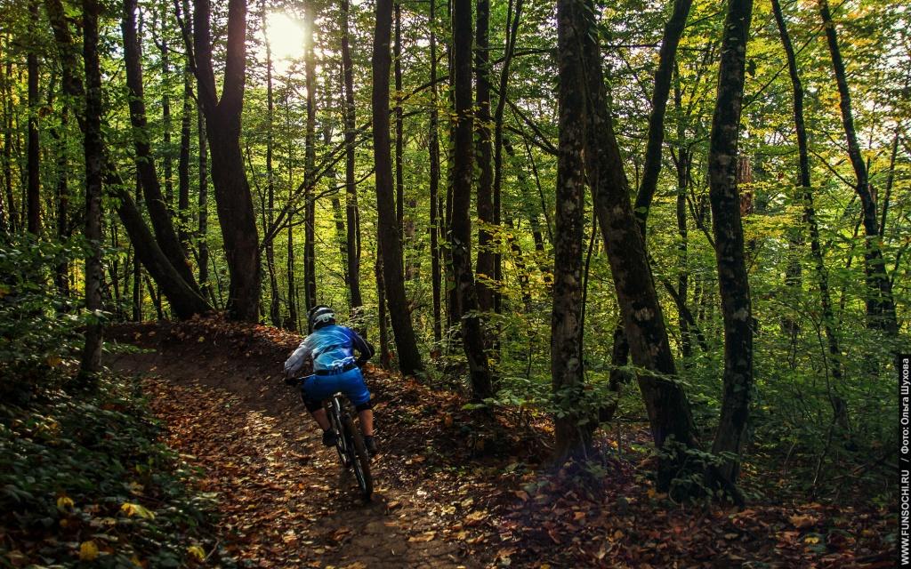 Gorky Bike Park: Осень в Горки байк-парке