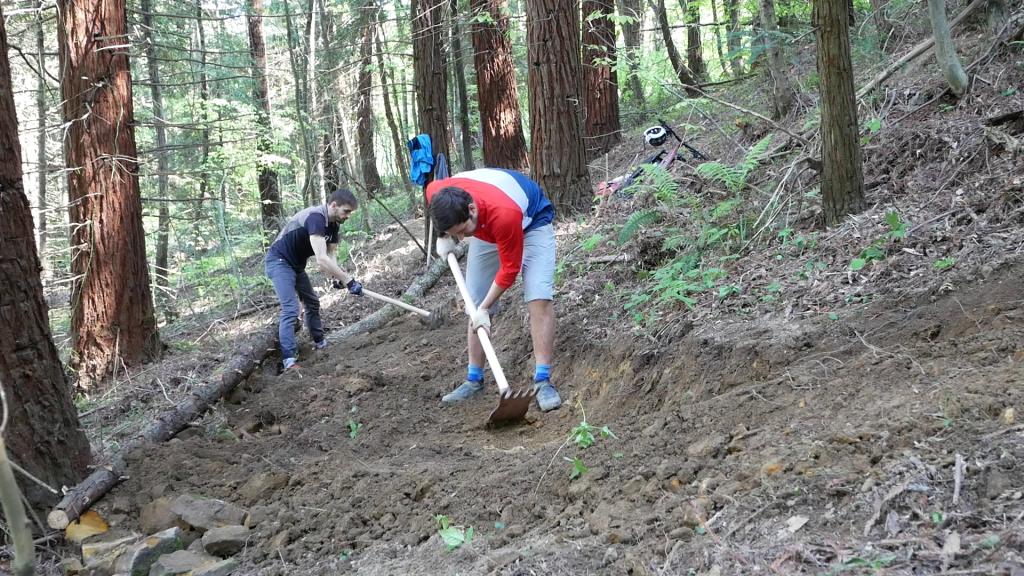 Блог им. ZoozR: Строим новый спот в Сочи. Проект 3 трейла, новый трейл в кайфовом лесу.