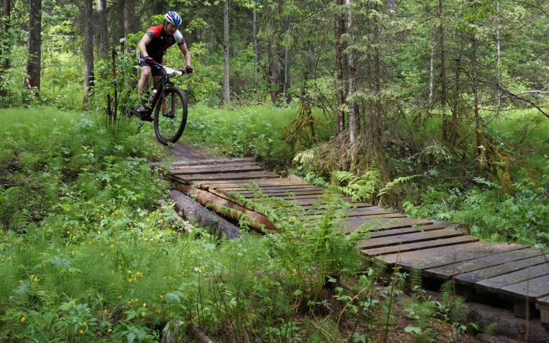 Наши гонки: Forest Riders в Краснотурьинске